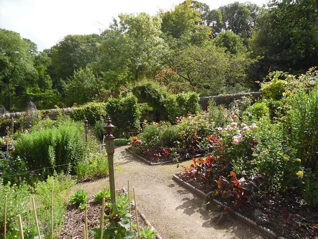 angielski ogród kuchenny, warzywny
