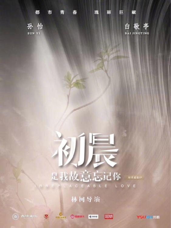 Irreplaceable Love (Drama 2020)