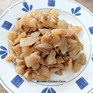 Chopped up scoby for chicken food.