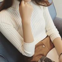 http://www.yesstyle.com/en/octavia-ribbed-turtleneck-sweater/info.html/pid.1046195019