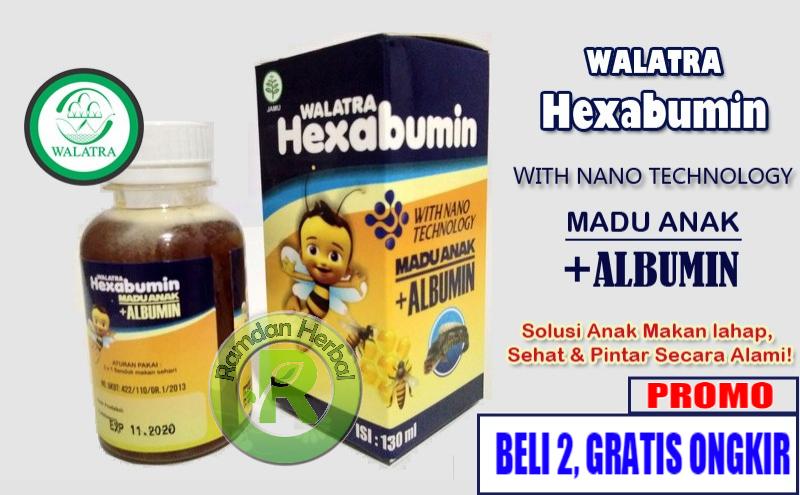 Harga Walatra Hexabumin Asli