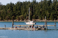Cornet Bay Fishing, Deception Pass State Park