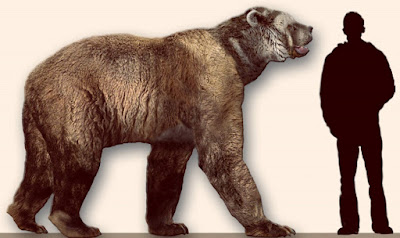 Ancient DNA reveals evolution of giant bears in the Americas