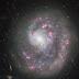 NGC 4625: Galaksi yang Punya Satu Lengan Spiral