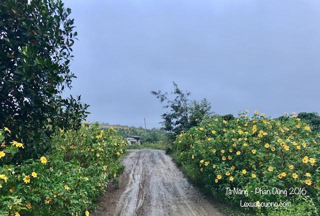 Trekking%2BTa%2BNang%2BPhan%2BDung%2B18 - Cung đường trekking Tà Năng - Phan Dũng ngày trở lại, mùa mưa 2016