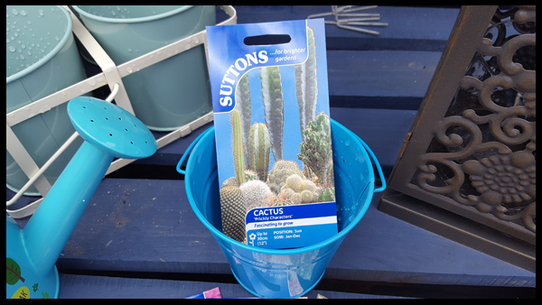Preparing my Cactus Seeds
