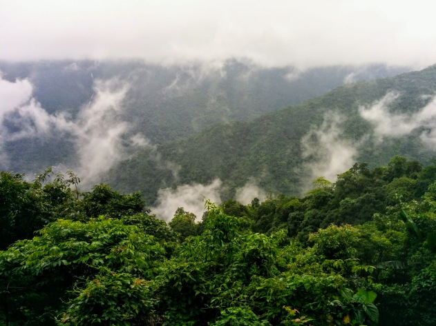 The land of the clouds that is called Meghalaya