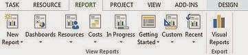 MS Project Report Options, ms project tutorial