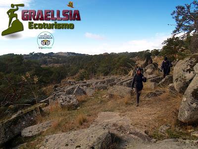 Pinares Llanos de Peguerinos