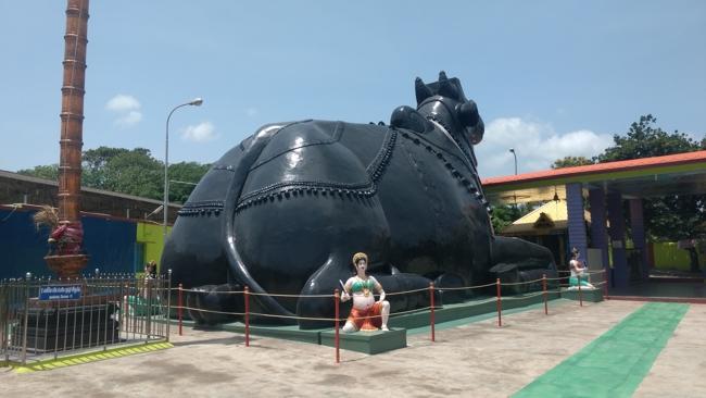 Asia's Largest Nandi