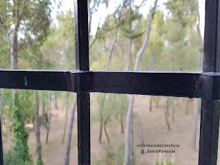 http://enfermeradetrinchera.blogspot.com.es/