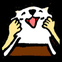 Pomeranian Snowball (Chinese version)