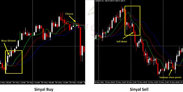 Profit Trading Forex dengan Indikator