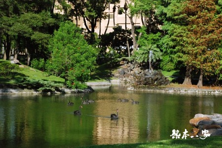 台北賓館|台北賓館參觀 不是台北旅館住宿哦|台北中正區古蹟|捷運台大醫院站景點