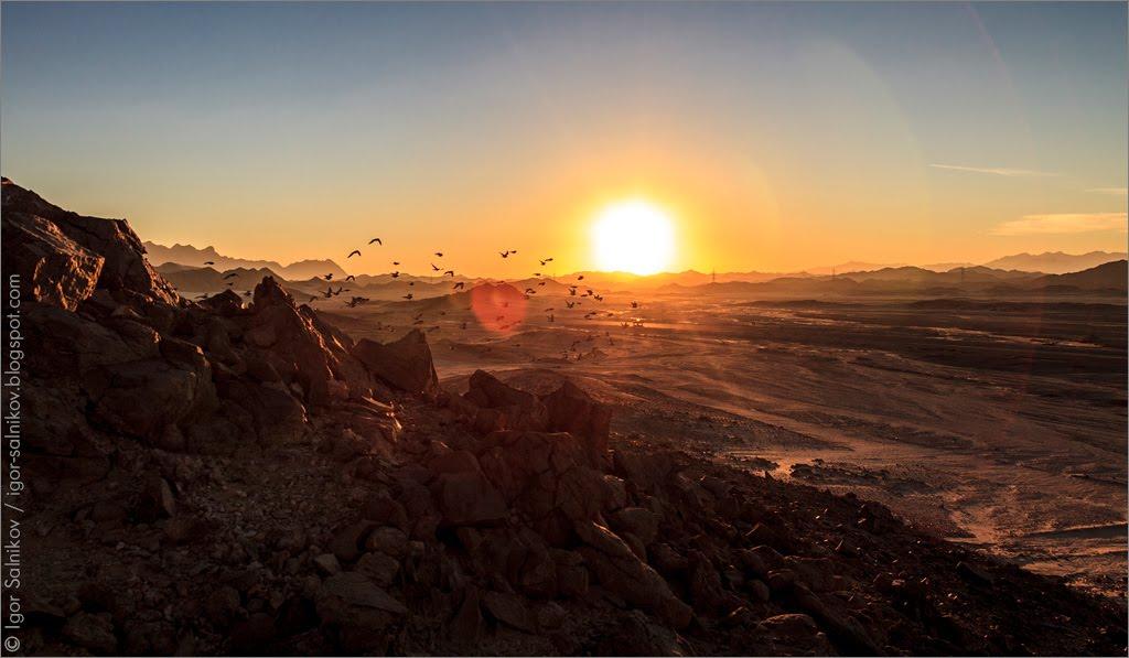 Египет Аравийская пустыня дорога Хургада-Луксор