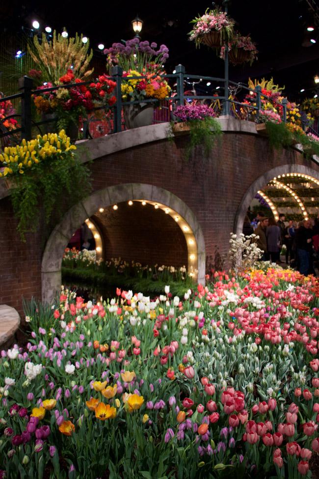 The Philadelphia Flower Show - Part 1: Design