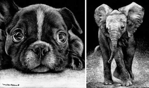 00-Melissa-Helene-Amazing-Expressions-in-Scratchboard-Animal-Portraits-www-designstack-co