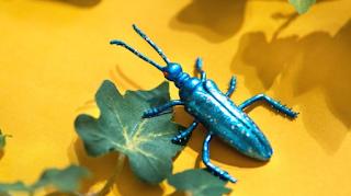 Τι κάνει το μπλε οινόπνευμα στις κατσαρίδες;