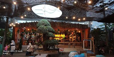 Dira Cafe & Pool Kuliner Murah di Jember