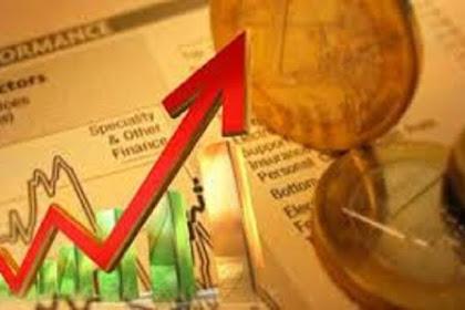 Definisi Investasi dan Tujuannya Secara Umum