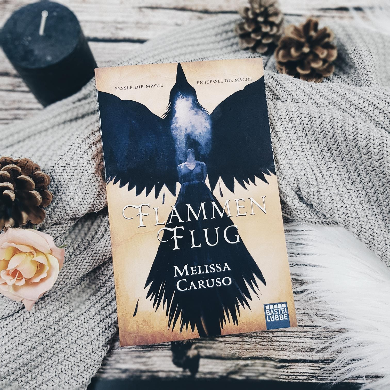 Bücherblog. Rezension. Buchcover. Flammenflug (Band 1) von Melissa Caruso. Fantasy