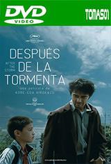 Después de la tormenta (2016) DVDRip