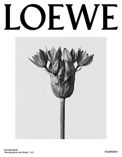 perfume Loewe 001 mujer y hombre