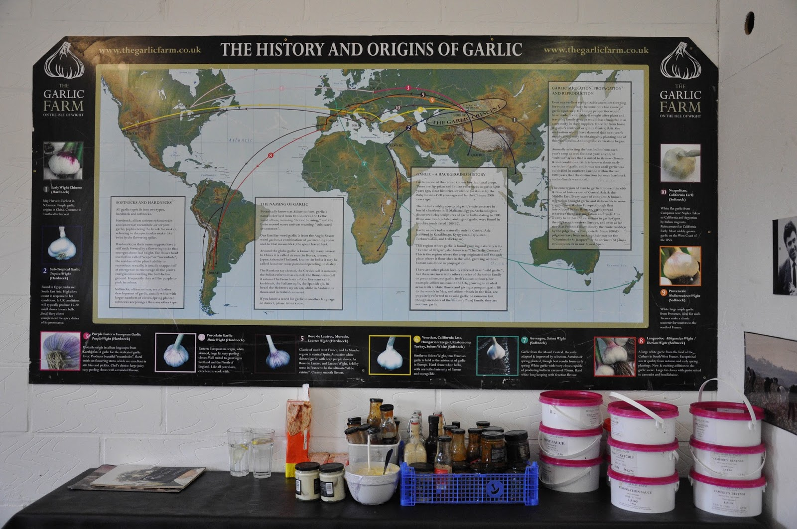 History and Origins of garlic map, The Garlic Farm, Isle of Wight, UK
