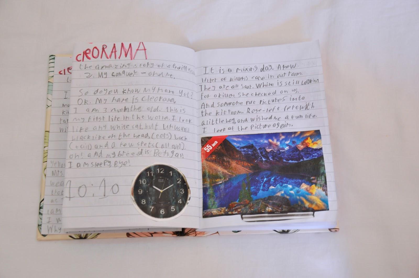 Umm Maimoonah S Journal