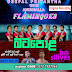DEEPAL PRIYANTHA WITH FLAMINGOES LIVE IN BATAPOLA 2017-04-18