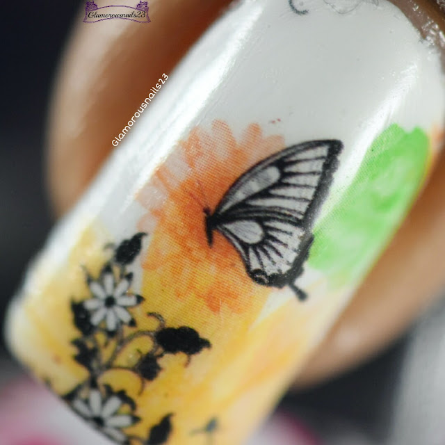 Lady Queen Butterfly Print Water Decals