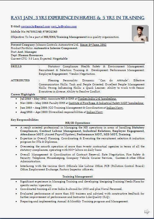 sample resume hr recruiter india professional resumes sample online