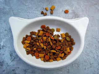 Makanan Landak Mini Yang Baik dan Menyehatkan