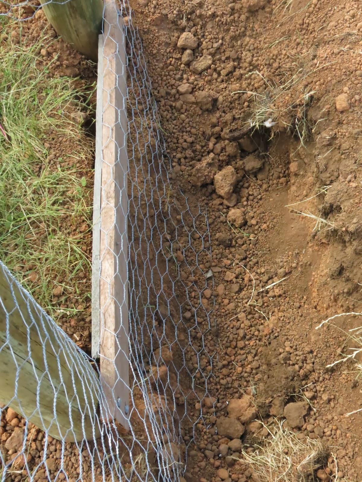 Pretending To Farm Building A Fox Proof Chicken Coop