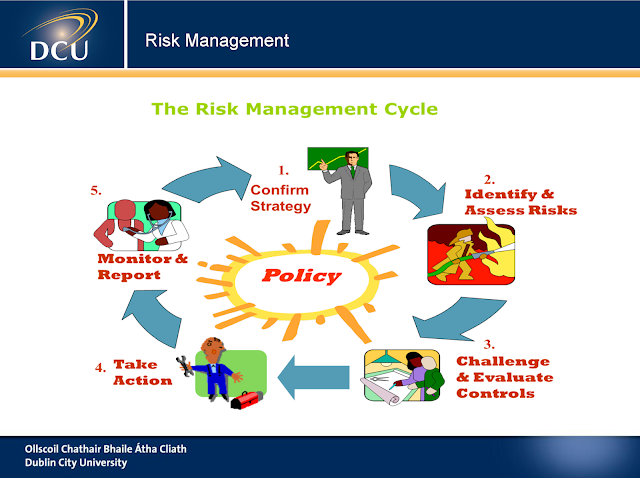 Introduction to Risk Management  pdf