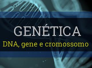 genética resumo conceitos básicos significado dna gene cromossomo