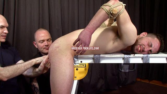porno gay hd old big dicks