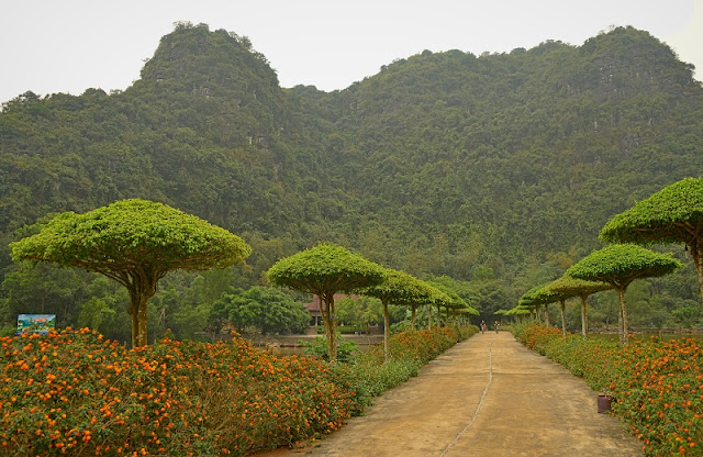 Discover The Green Oasis Near Hanoi 1