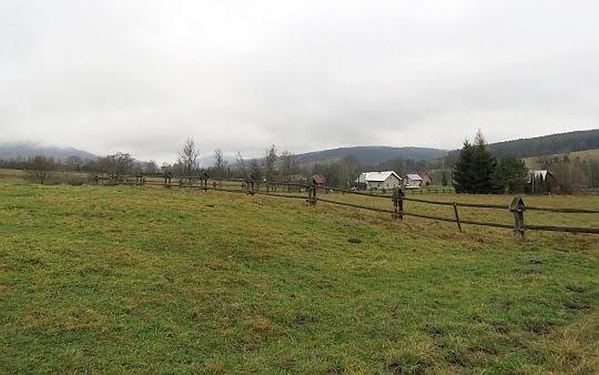 Pastwiska w Skwirtnem.