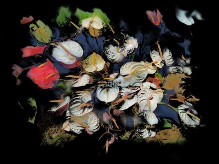 ushas fine art creations landscape paintings limited edition prints