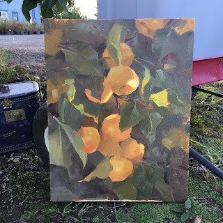 plein air oil painting of a pear tree by sarah sedwick