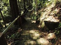 Taman Hutan Negara Gunung Stong, Kelantan