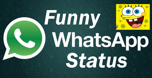 Funny videos download for whatsapp status