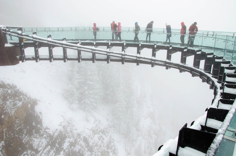 Glacier Skywalk in Snow