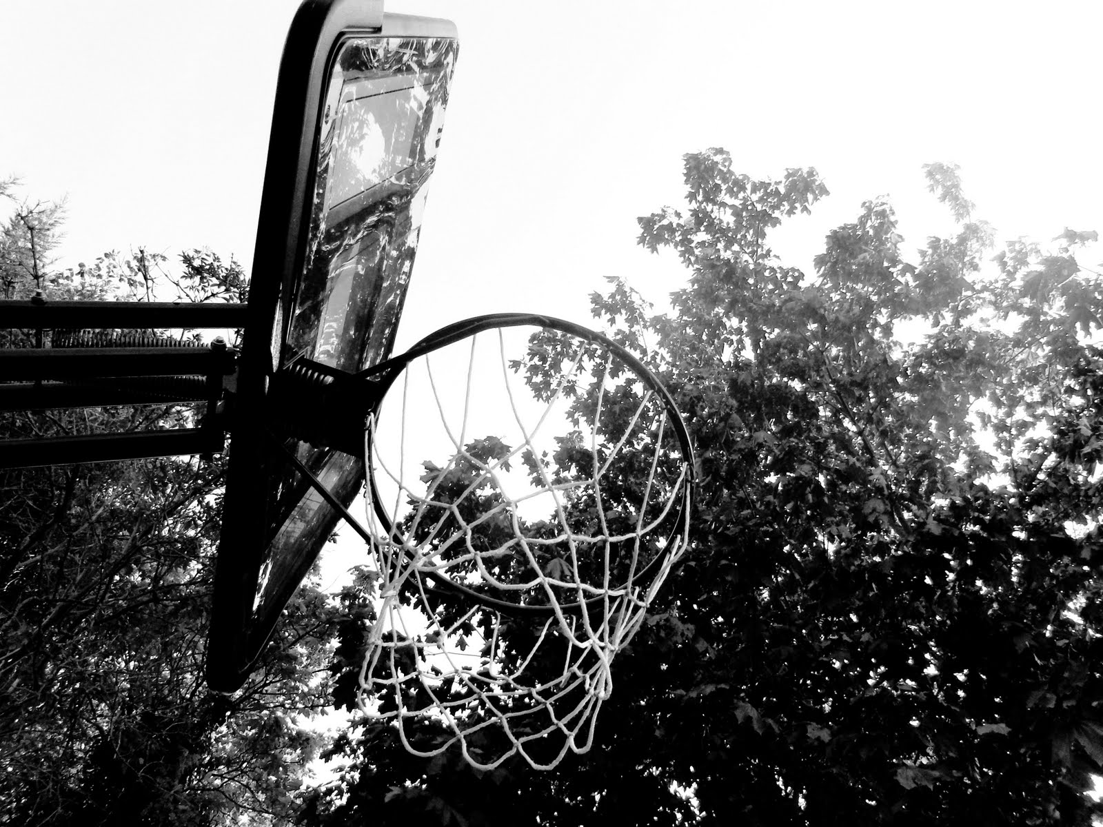 Basketball is a sport that ive always really enjoyed so i have a basketball hoop in my back garden the hoop is black and white already so it seemed only