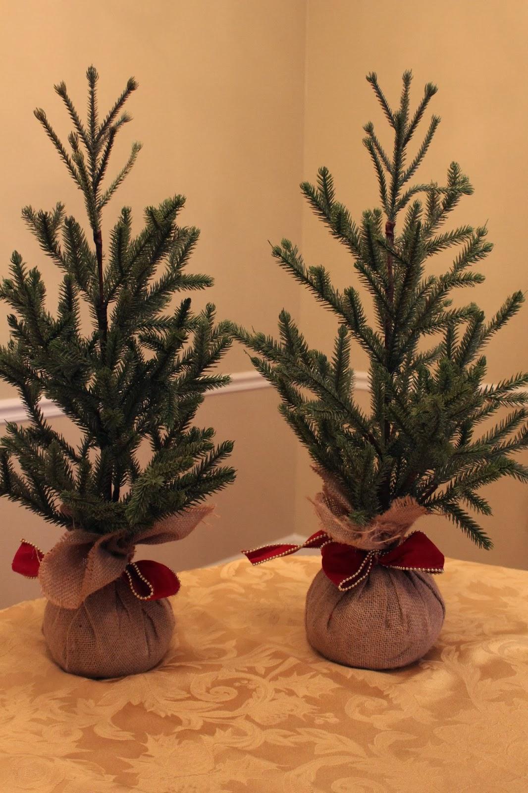 Keeping Up With The Kiddos: Mini Christmas Trees