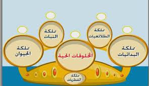 تحضير درس تقسيم مخلوقات العالم في اللغة العربية للسنة الثانية ثانوي