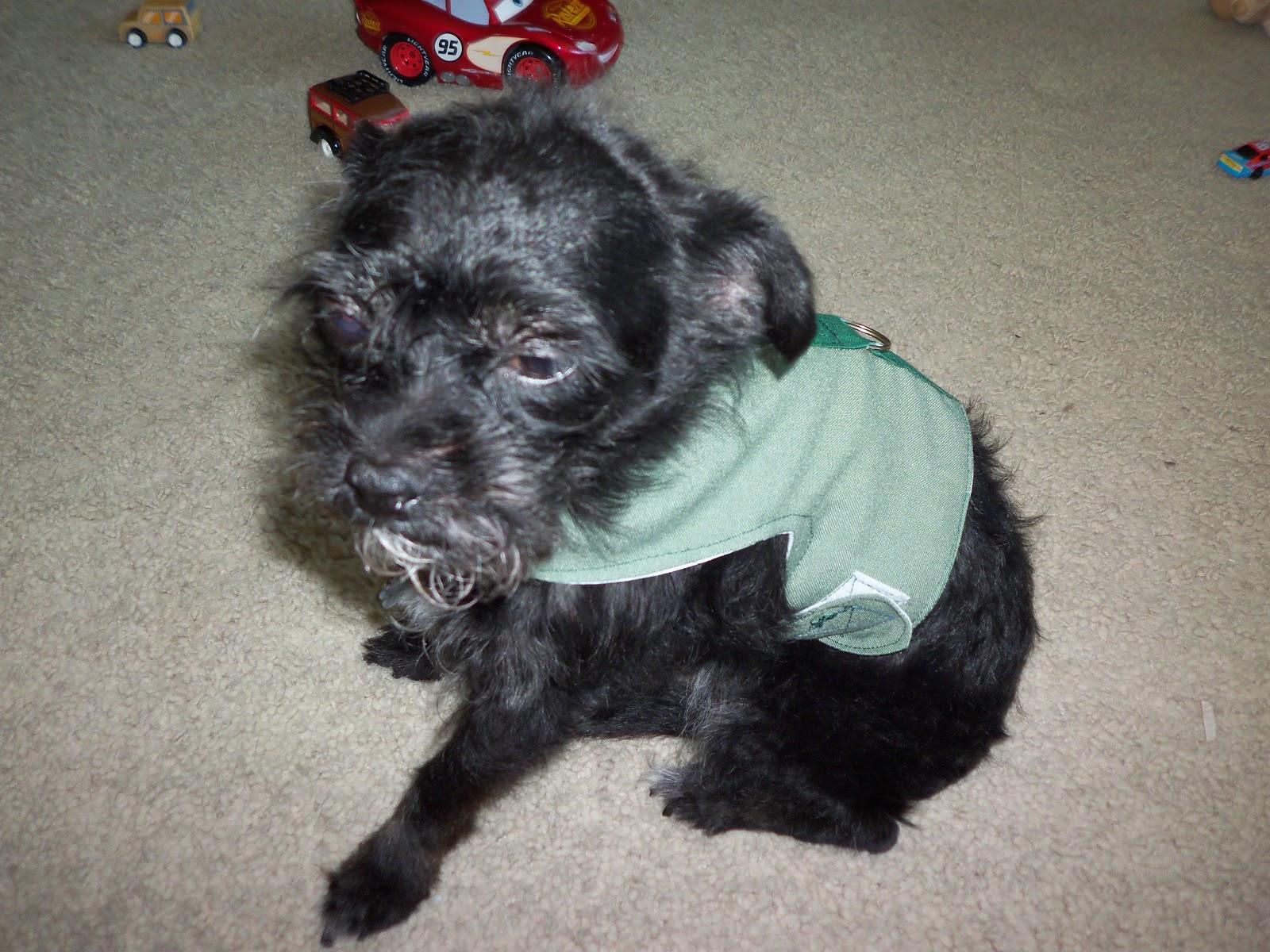 Vest On on Fabric Dog Harness Pattern