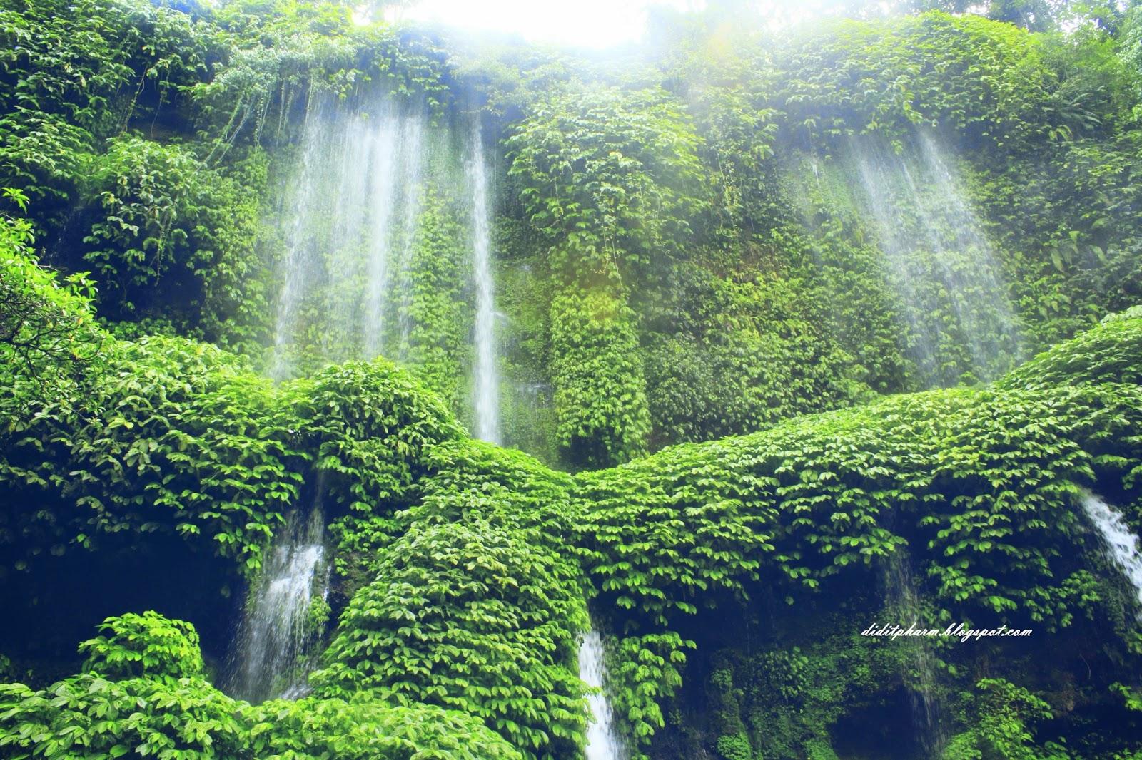 gambar Air Terjun Benang Kelambu