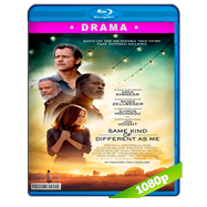 Uno tan diferente como yo (2017) BRRip 1080p Audio Dual Latino-Ingles